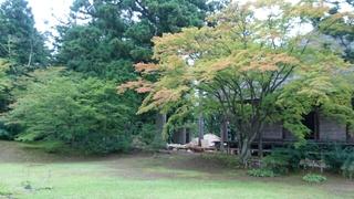 【秋】がはじまった